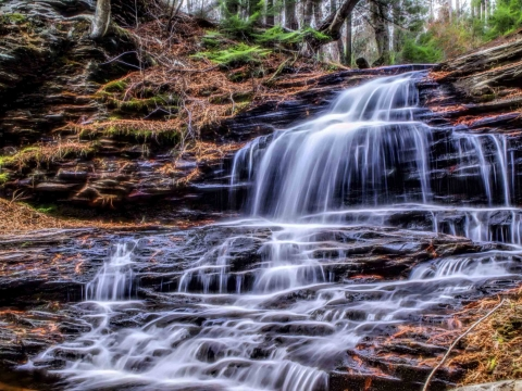 Rickett's Glen Waterfall